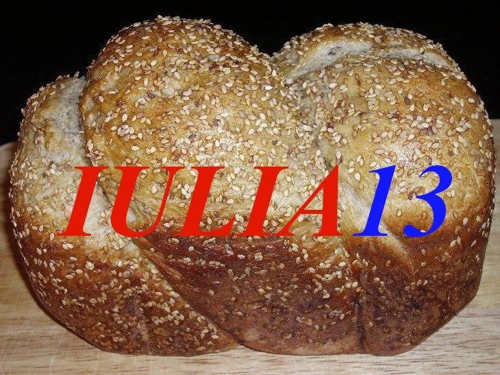 paine de tara 1