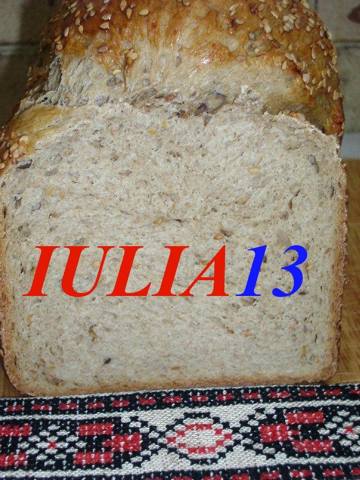 paine taraneasca la masina de paine