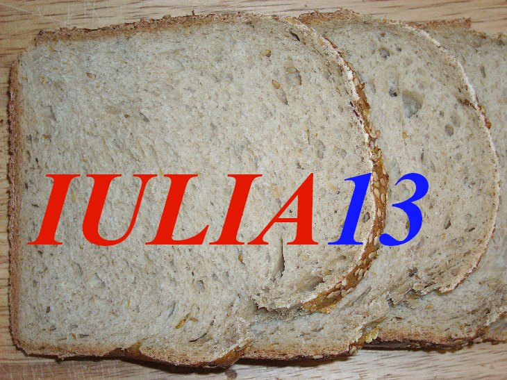 paine taraneasca la masina de paine 2